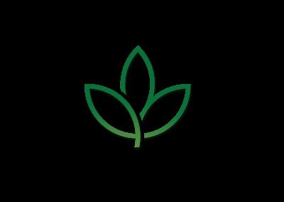 WCA-charter-school-logo-design