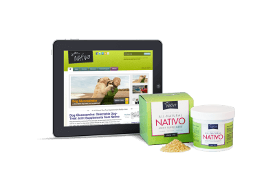 nativo-best-website-design
