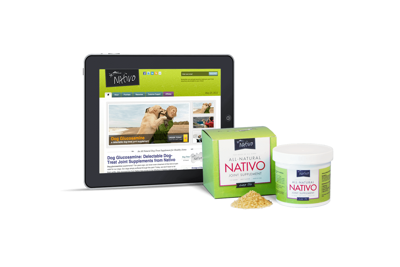 nativo-best-website-design