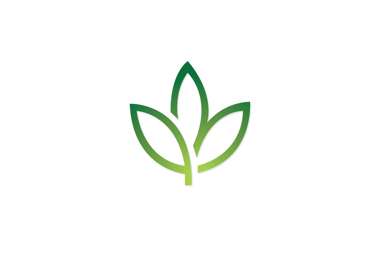 windsor-charter-academy-logo-design