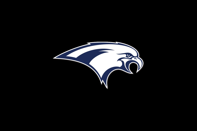 windsor-firebirds-logo